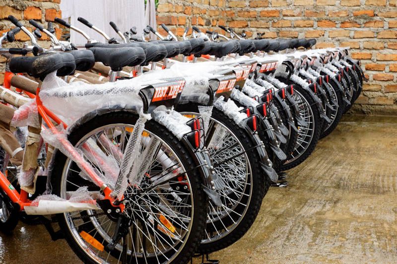 A group of bicycles waits for their new riders.